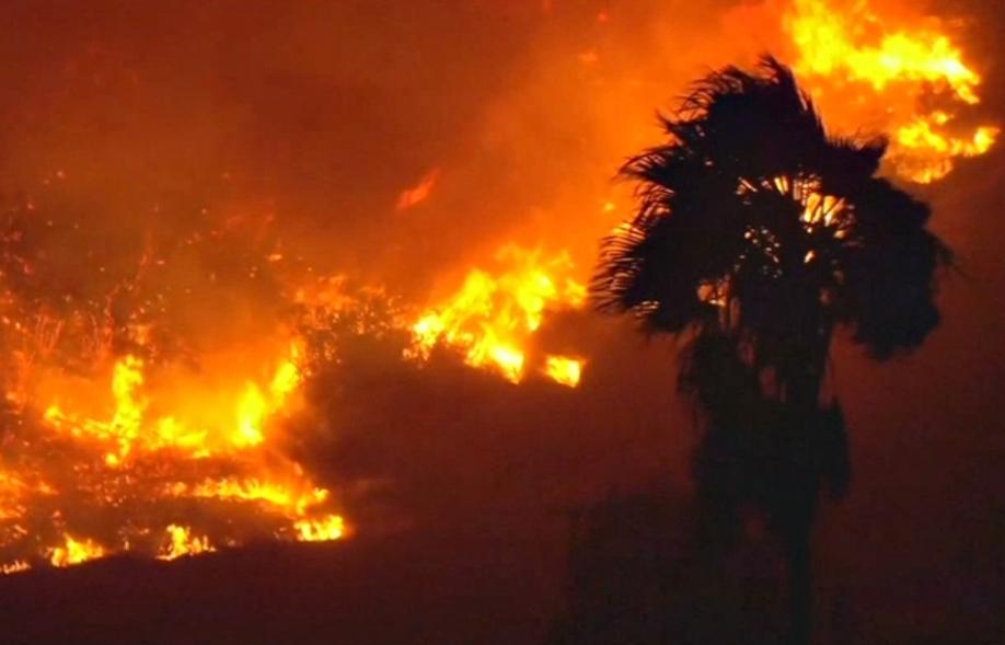 Власти Лос-Анджелеса предупредили граждан  окритической пожарной опасности