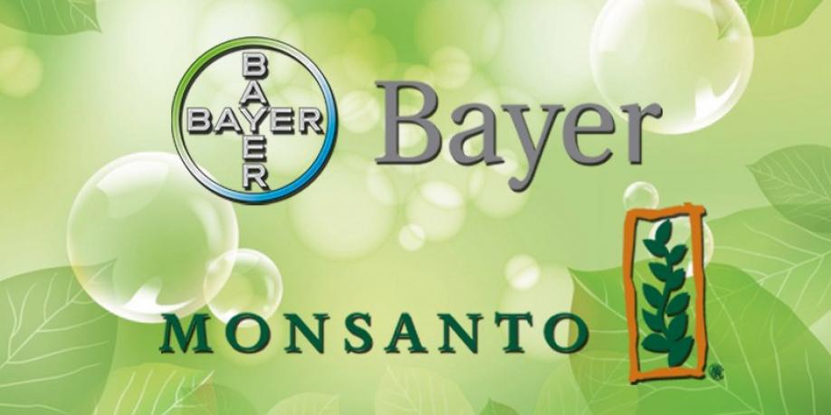 Немецкая Bayer купила производителя ГМО Monsanto