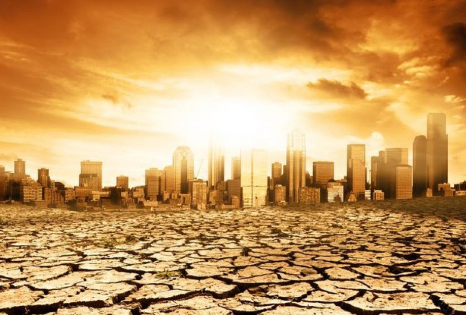 Ученые: 2016 год будет  самым теплым завсю историю наблюдений