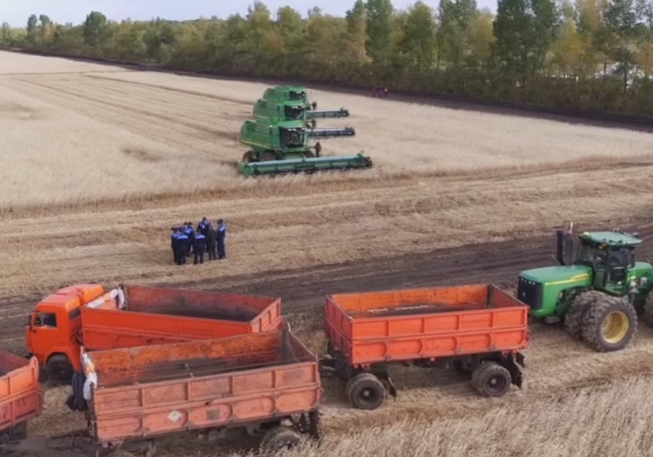 ВКазахстане намолочено неменее 15,719 млн. тонн зерна