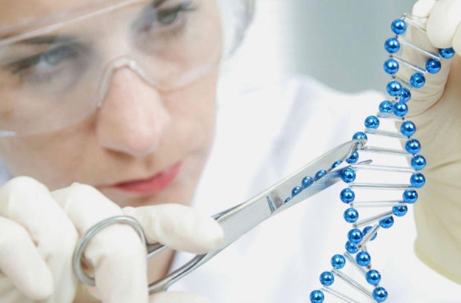 Американские учёные создали полусинтетическую форму жизни