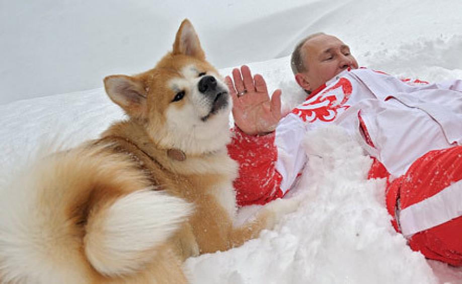 Власти Японии приняли решение недарить Путину еще одну собаку